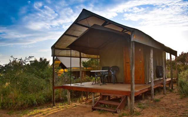 Tented accommodation at Utshwayelo Lodge in Kosi Bay