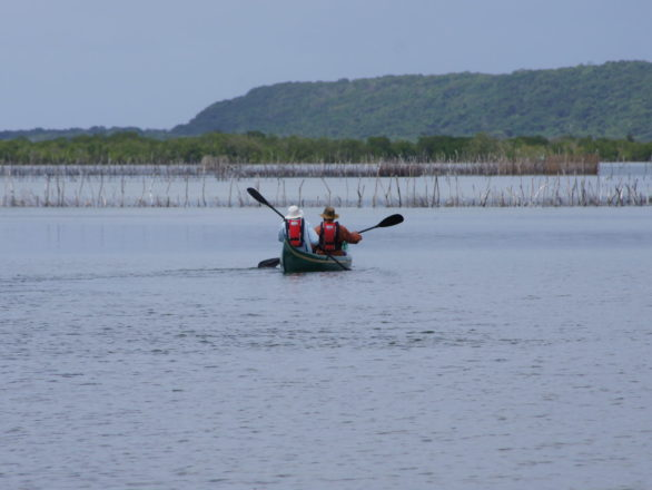 Activities at Kosi Mouth include canoe safaris