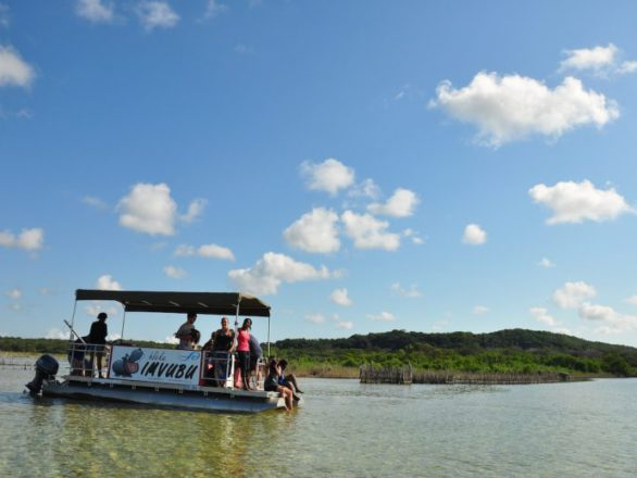 Kosi Bay Boat Cruises at Utshwayelo Lodge