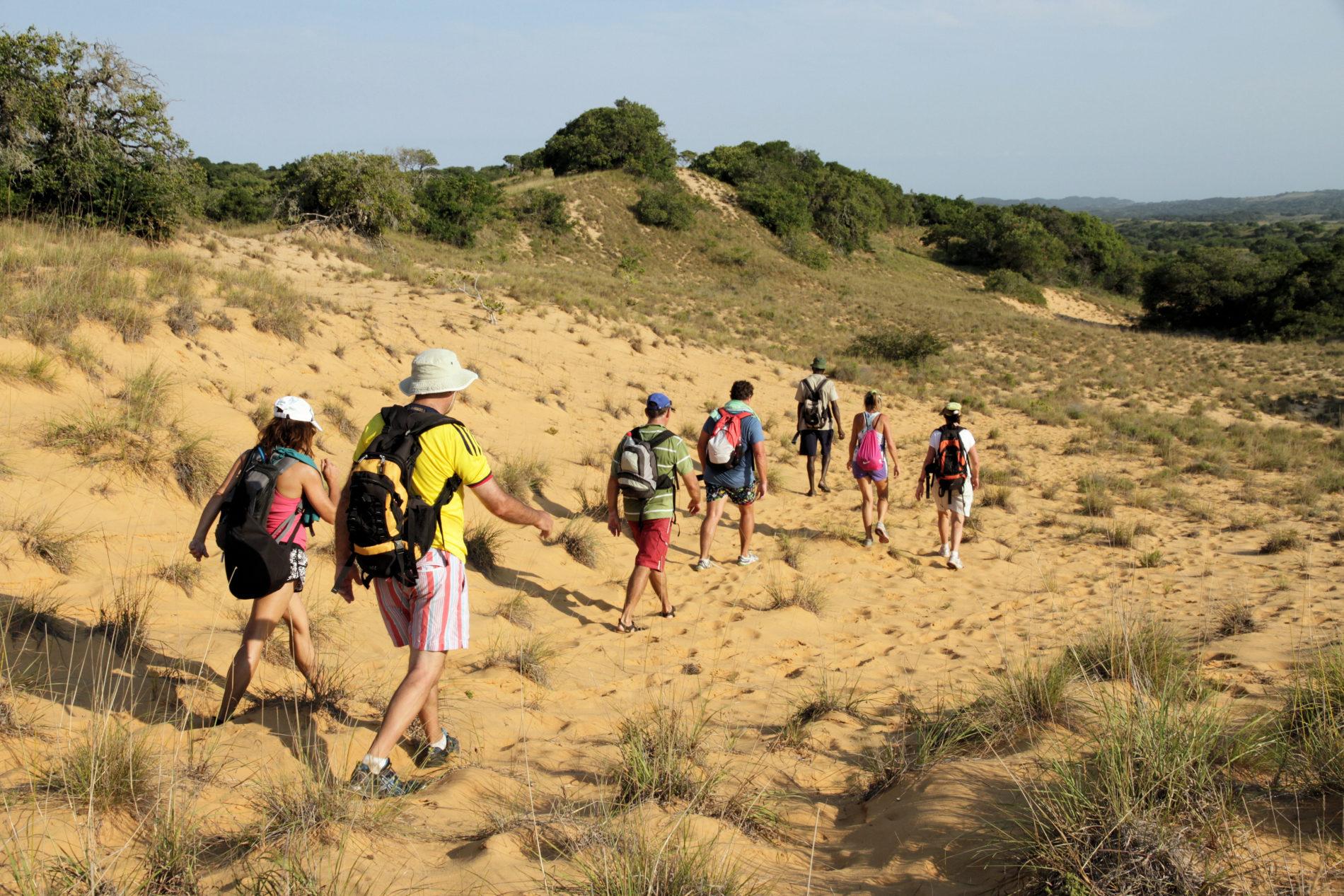 Nature Walks in Kosi Bay at Utshwayelo Lodge
