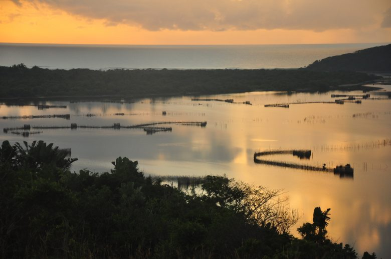 VIew of fish traps at Kosi Bay